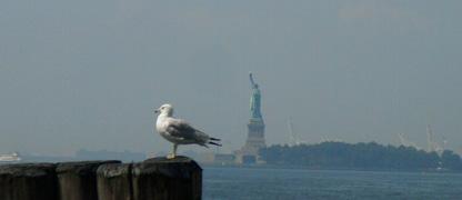 liberty_ny