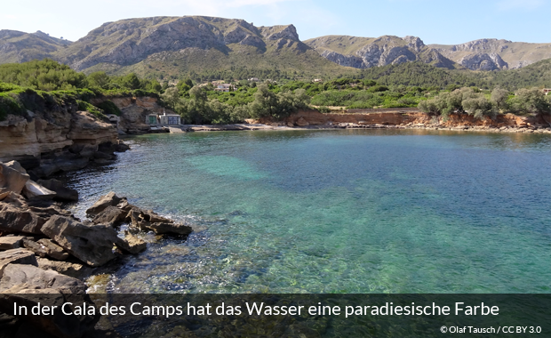 Der Strand in der Cala des Camps auf Mallorca