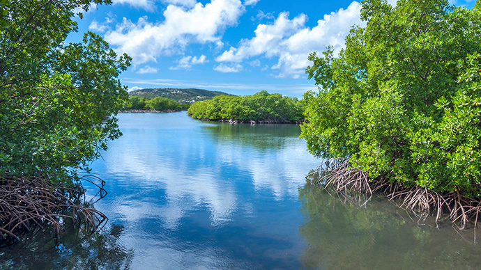 Culebra ist eine der schönsten karibischen Inseln