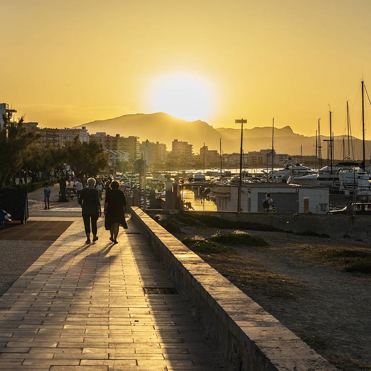 beste Zeit zum Flüge buchen Mallorca