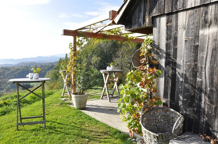 Herbst Steiermark Weinregion